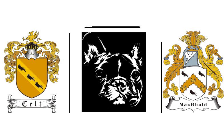 Celt MacBhaid